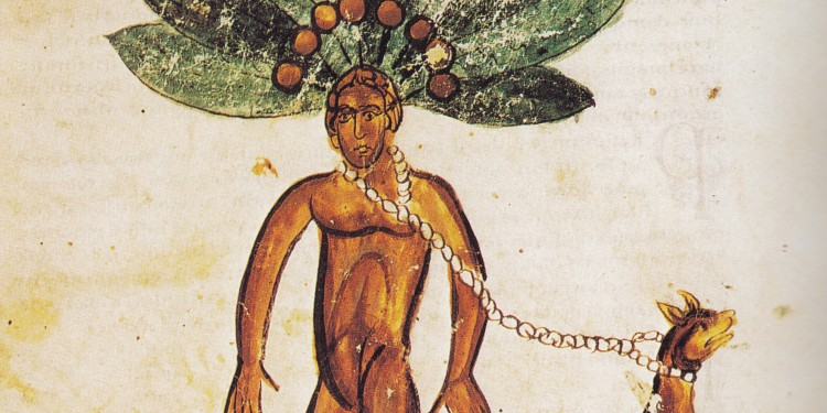 Mandrake painting, 13th century © Unknown | Wikimedia Commons