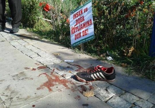 ankara massacre- stop the massacre of nature and human beings