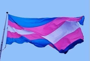 sfl-transgender-flag-controversy-flaps-in-wilton-manors-20170327