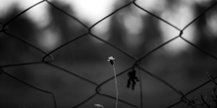 Prisoner © Premnath Thirumalaisamy | Flickr